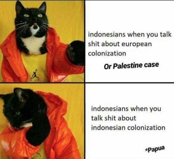 Cat Drake meme